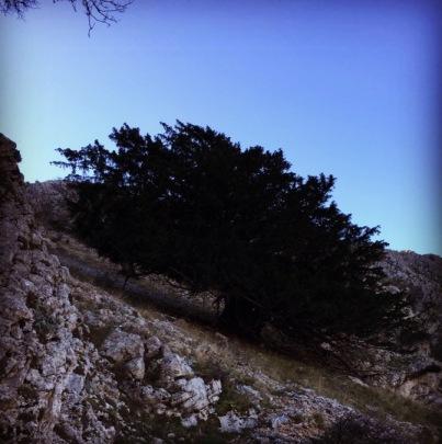 Kreion_Ktenias_Mountain_07