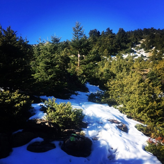 artemisio_mountain_winter_03