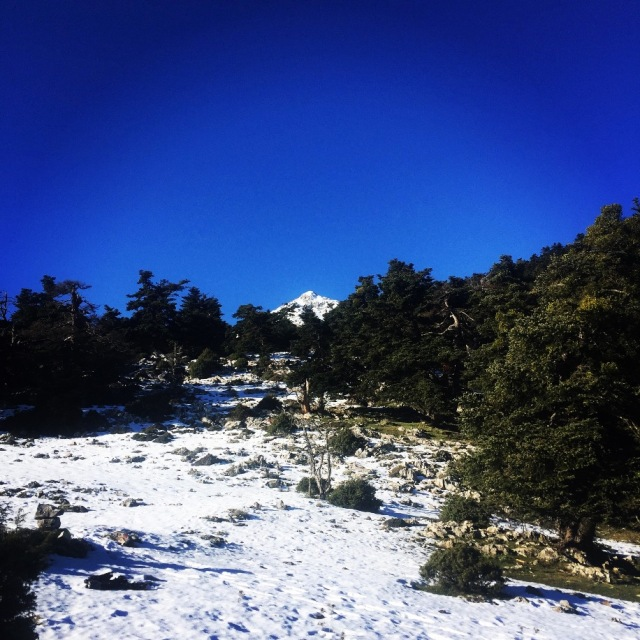 artemisio_mountain_winter_04