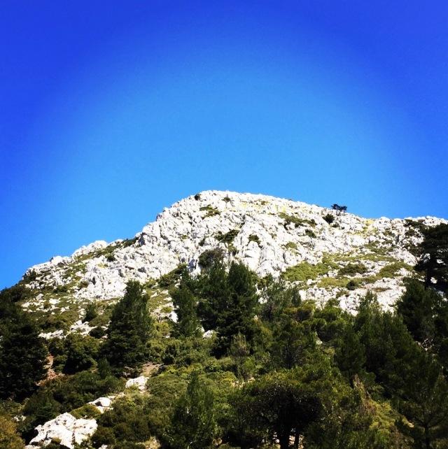 Gerania_Spring_Ascent_06