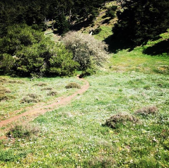 Gerania_Spring_Ascent_14