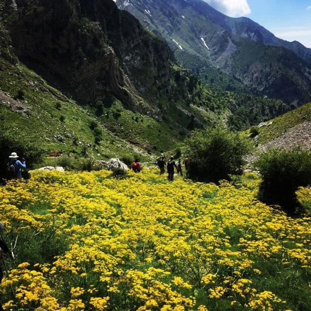 Erymanthos_Mountain_2017_32