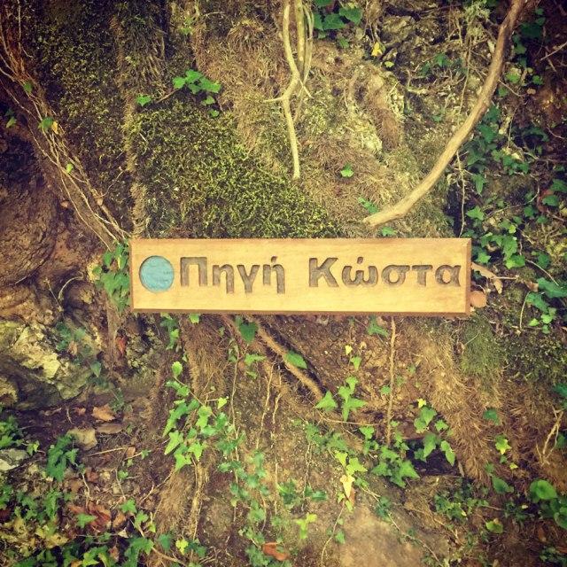 Skiritida_Forest_Vlachokerasia_16