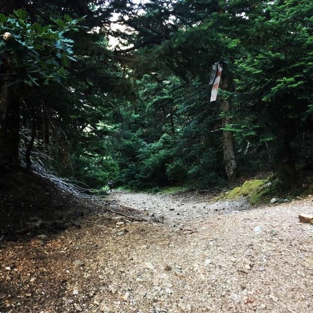 Mount_Pentelia_Dourdouvana_03