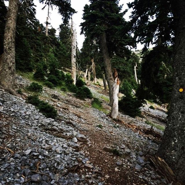Mount_Pentelia_Dourdouvana_14