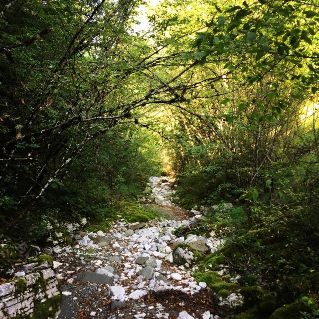 Mount_Tymfi_(Pindos)_Thru-Hike_Part_01_Kapesovo_Mezaria_Gorge_Vikos_Canyon_Mikro-Papingo_0615