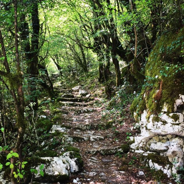 Mount_Tymfi_(Pindos)_Thru-Hike_Part_01_Kapesovo_Mezaria_Gorge_Vikos_Canyon_Mikro-Papingo_0623