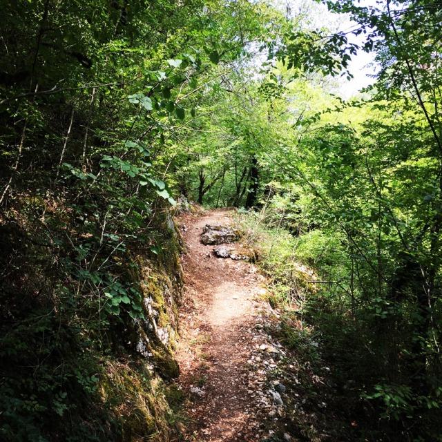 Mount_Tymfi_(Pindos)_Thru-Hike_Part_01_Kapesovo_Mezaria_Gorge_Vikos_Canyon_Mikro-Papingo_0624