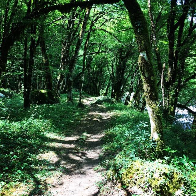 Mount_Tymfi_(Pindos)_Thru-Hike_Part_01_Kapesovo_Mezaria_Gorge_Vikos_Canyon_Mikro-Papingo_0631