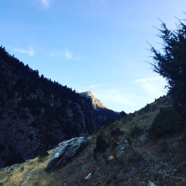 Mount_Aselinon_Giona_Karagianni_2017_1479