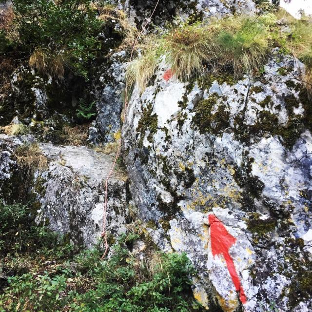 Mount_Aselinon_Giona_Karagianni_2017_1483