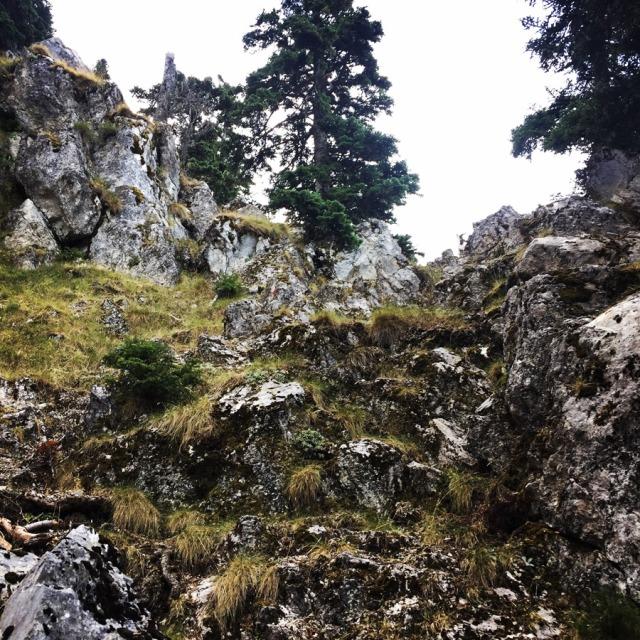 Mount_Aselinon_Giona_Karagianni_2017_1489