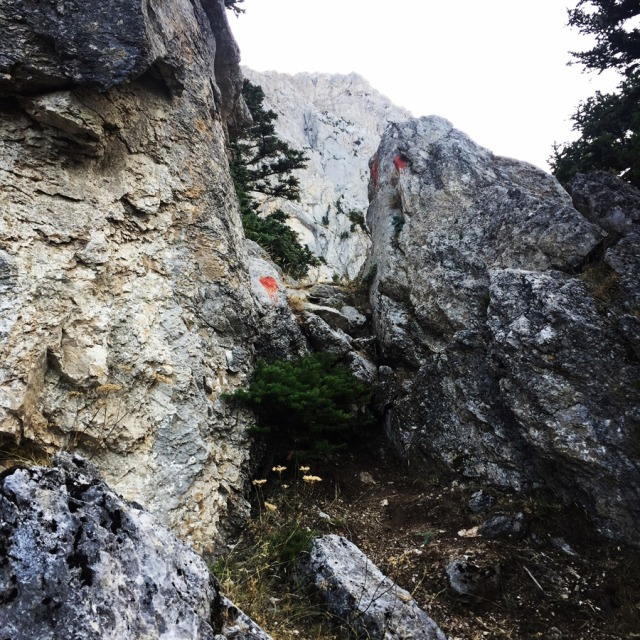 Mount_Aselinon_Giona_Karagianni_2017_1490