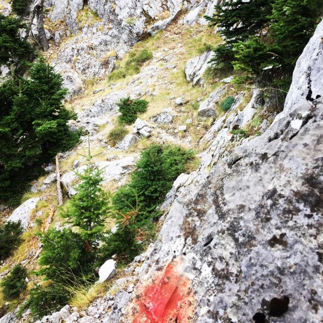 Mount_Aselinon_Giona_Karagianni_2017_1492