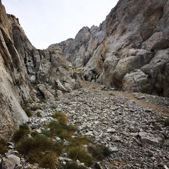 Mount_Aselinon_Giona_Karagianni_2017_1506