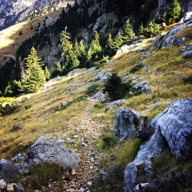 Mount_Aselinon_Giona_Karagianni_2017_1524
