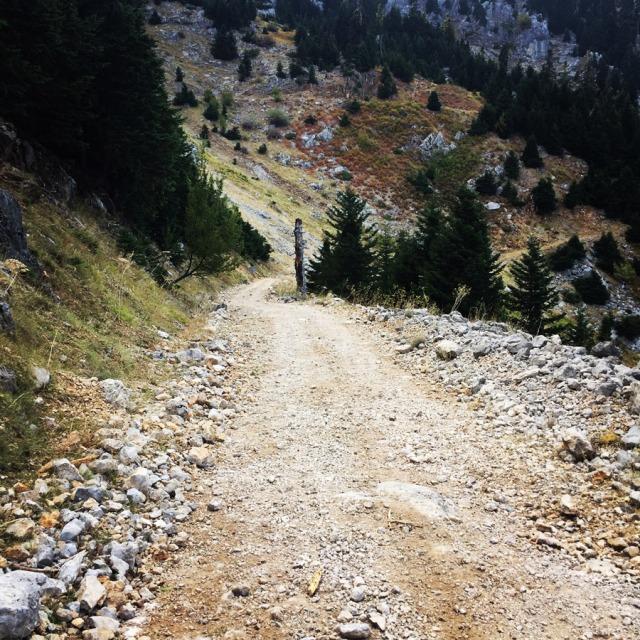 Mount_Aselinon_Giona_Karagianni_2017_1525