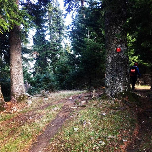 Agrafa_PanagiaPelekiti_Karamanoli_Neraida_Hiking_3499