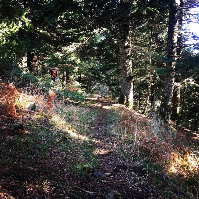 Agrafa_PanagiaPelekiti_Karamanoli_Neraida_Hiking_3501
