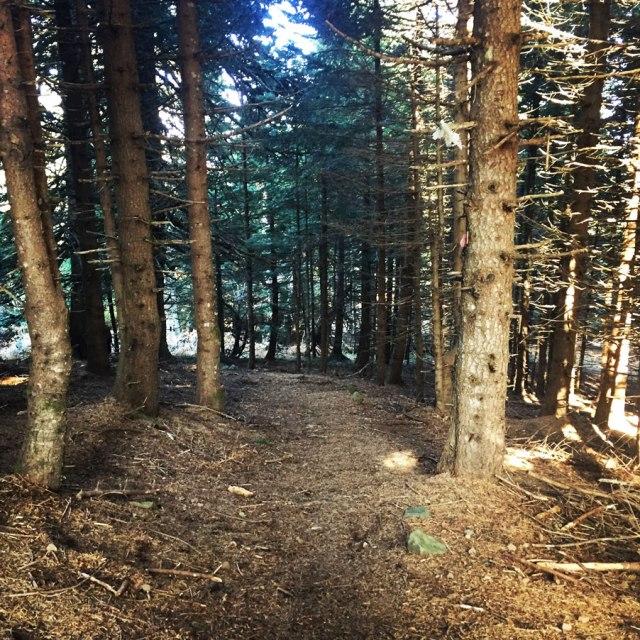 Agrafa_PanagiaPelekiti_Karamanoli_Neraida_Hiking_3503