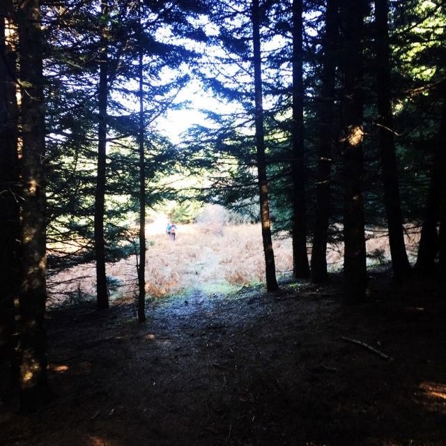 Agrafa_PanagiaPelekiti_Karamanoli_Neraida_Hiking_3504