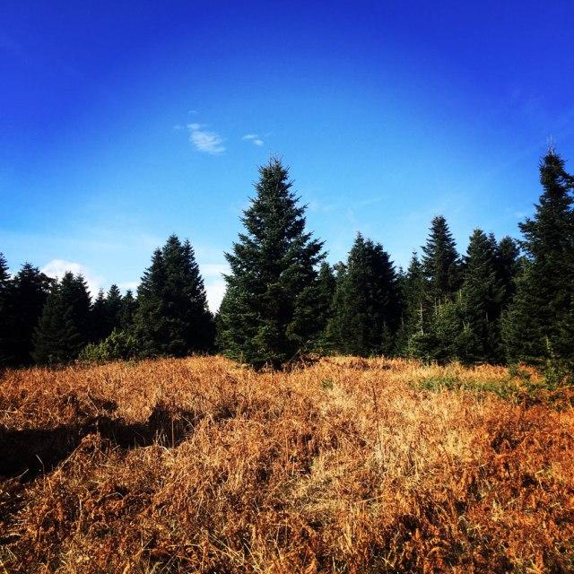 Agrafa_PanagiaPelekiti_Karamanoli_Neraida_Hiking_3505