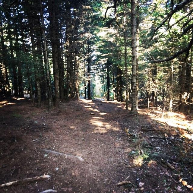 Agrafa_PanagiaPelekiti_Karamanoli_Neraida_Hiking_3506