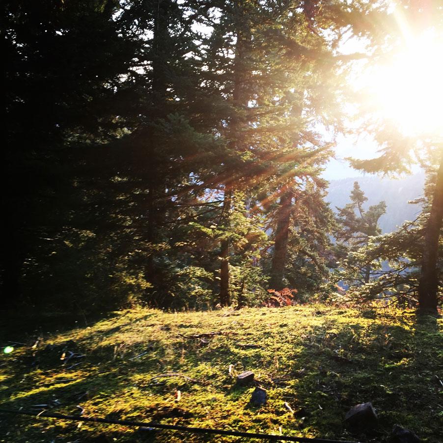 Agrafa_Svoni_Pouli_Papadimitri_Hiking_3438