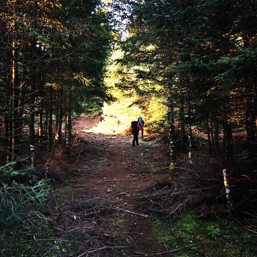 Agrafa_Svoni_Pouli_Papadimitri_Hiking_3439