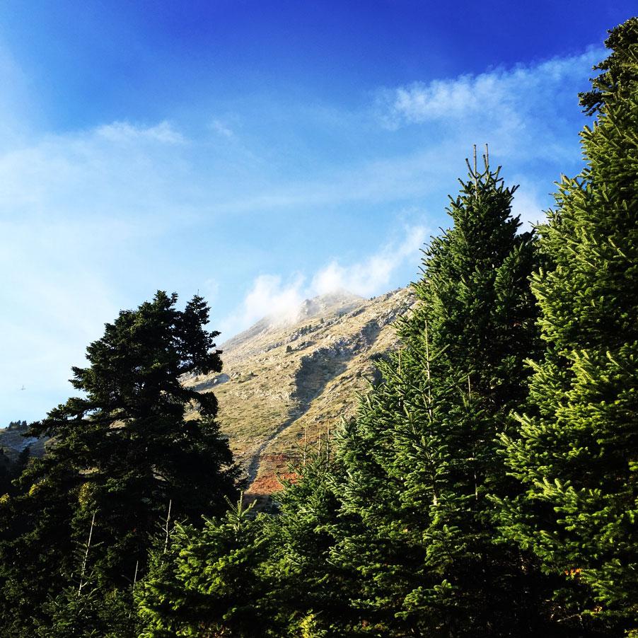 Agrafa_Svoni_Pouli_Papadimitri_Hiking_3445