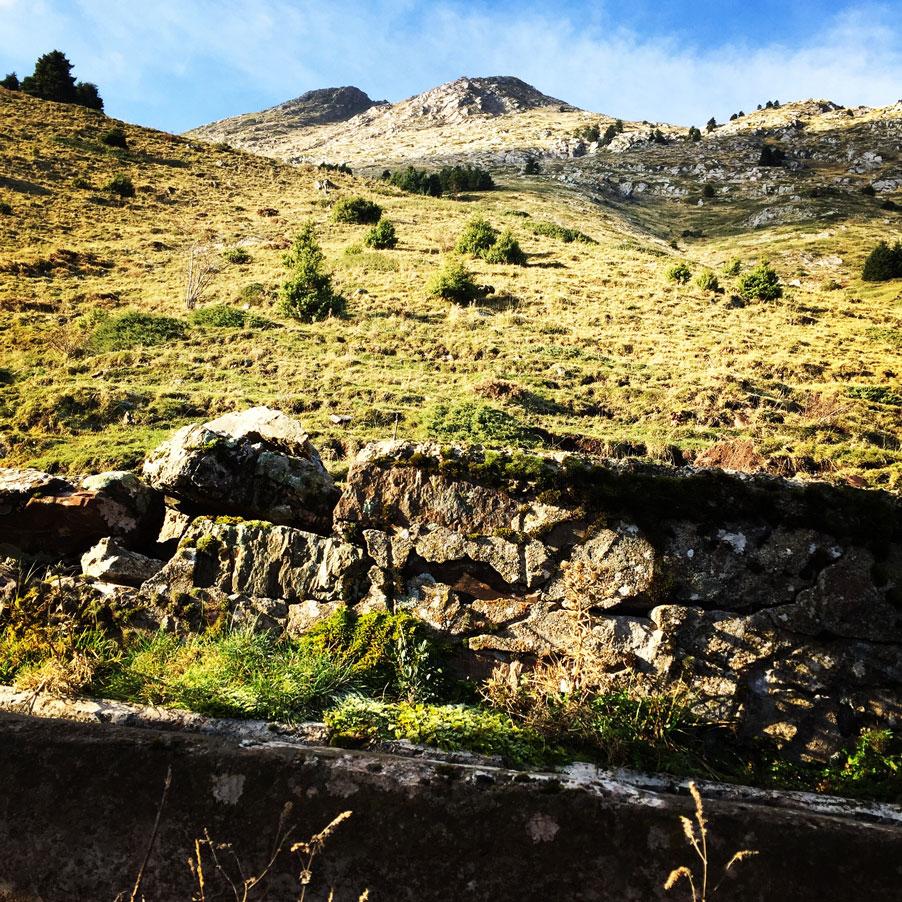 Agrafa_Svoni_Pouli_Papadimitri_Hiking_3451