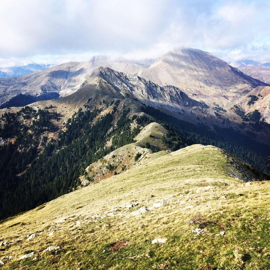 Agrafa_Svoni_Pouli_Papadimitri_Hiking_3459