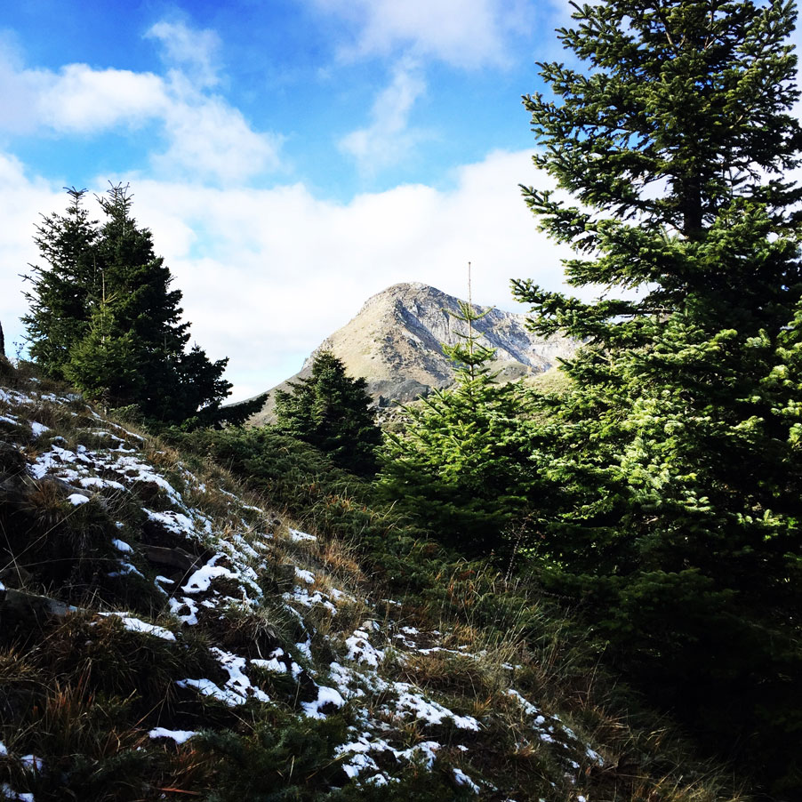 Agrafa_Svoni_Pouli_Papadimitri_Hiking_3461