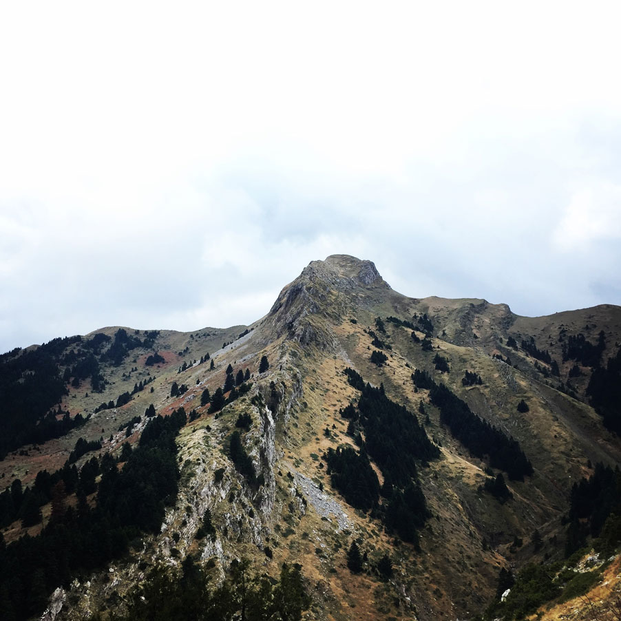 Agrafa_Svoni_Pouli_Papadimitri_Hiking_3480