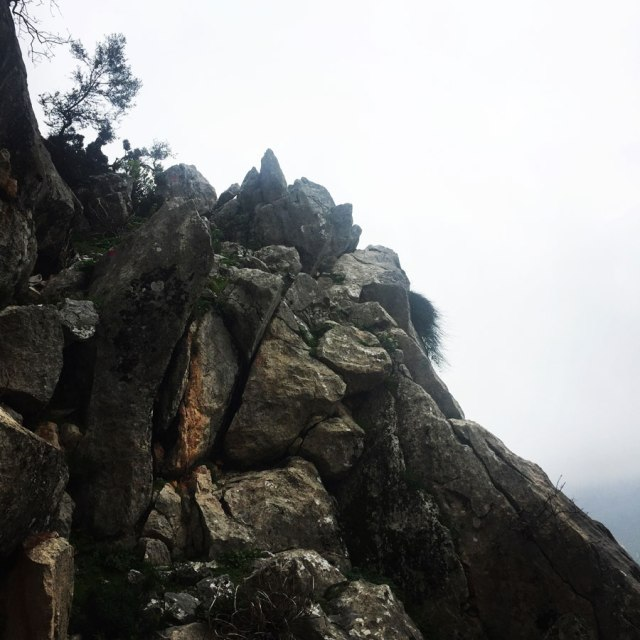 Parnitha_Arma-Via-Ferrata4557