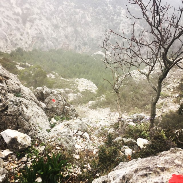 Parnitha_Arma-Via-Ferrata4566