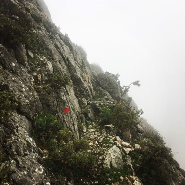 Parnitha_Arma-Via-Ferrata4569