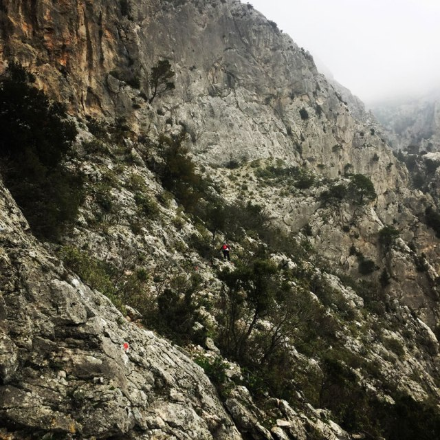 Parnitha_Arma-Via-Ferrata4579