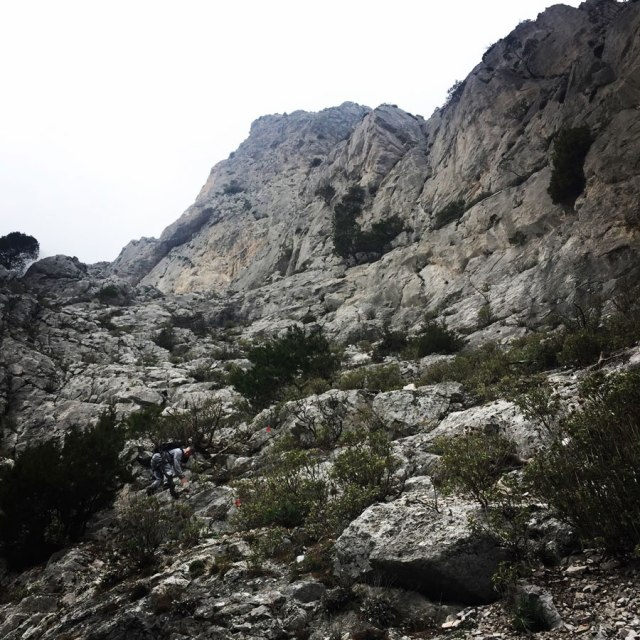 Parnitha_Arma-Via-Ferrata4582