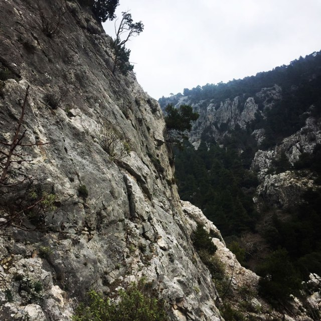 Parnitha_Arma-Via-Ferrata4583