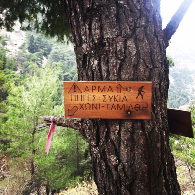 Parnitha_Arma-Via-Ferrata4584