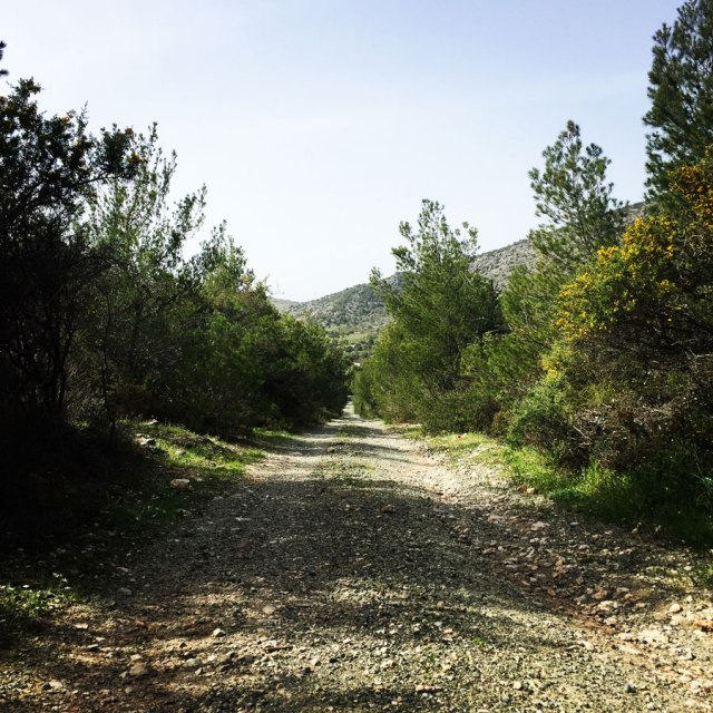 Hiking-Ermioni-Argolis_5708