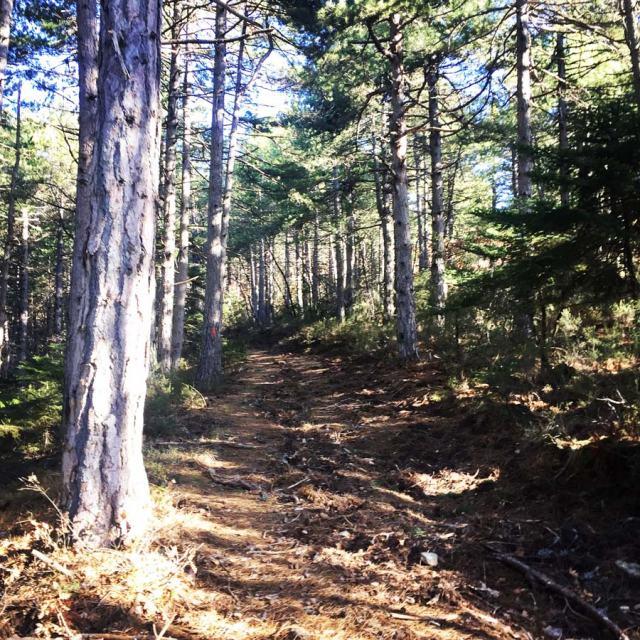 Olympus_Mountaineering_Nisi-Peak_Chelmos_Aroania_5096