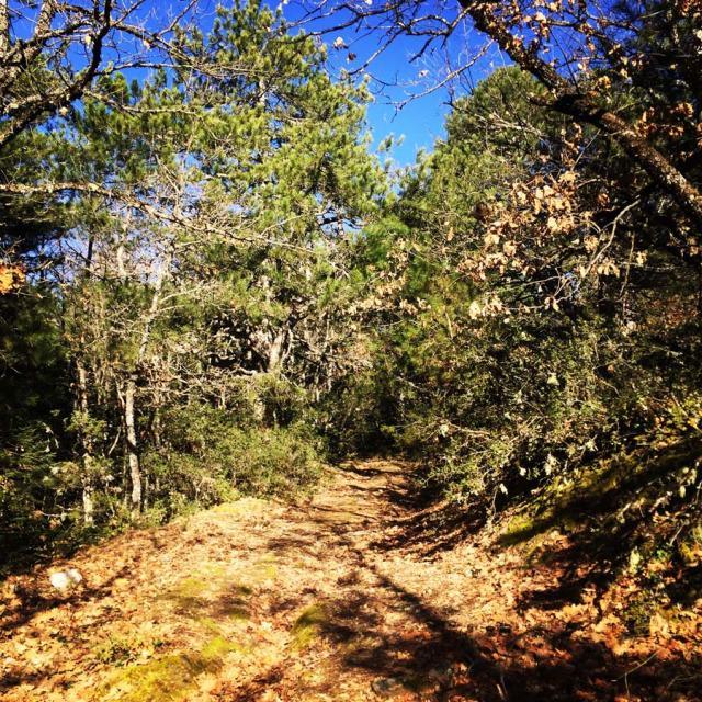 Olympus_Mountaineering_Nisi-Peak_Chelmos_Aroania_5097