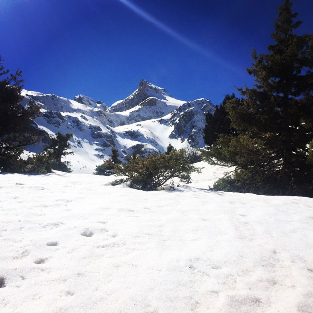 Vardousia_Lion_Gully_Olympus_Mountaineering_5370