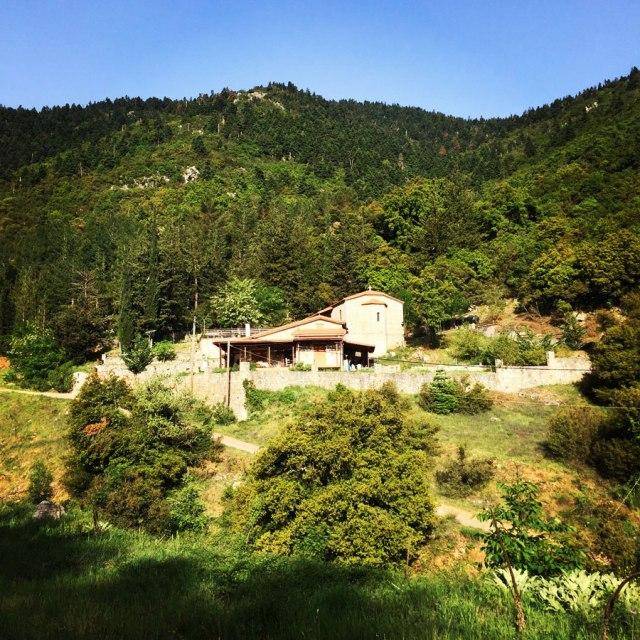 Mount_Oligyrtos_Chionotripa_Grimini_7828