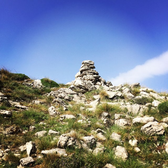 Mount_Oligyrtos_Chionotripa_Grimini_7852