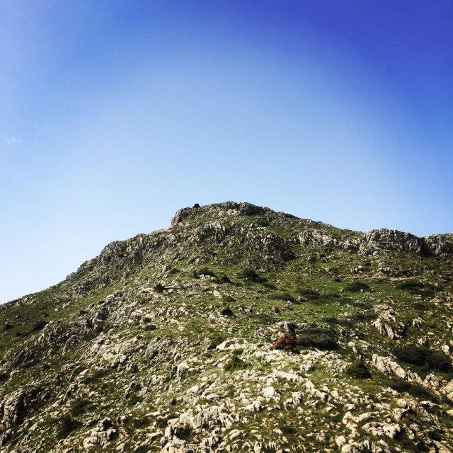 Mount_Oligyrtos_Chionotripa_Grimini_7853