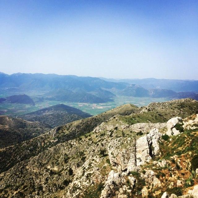 Mount_Oligyrtos_Chionotripa_Grimini_7857