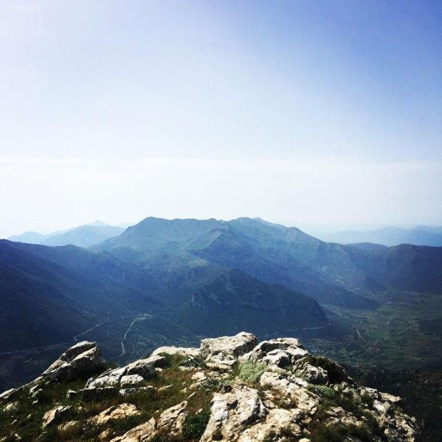 Mount_Oligyrtos_Chionotripa_Grimini_7858